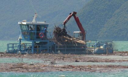 Alto Sebino,il battello spazzino al lavoro per recuperare legno e plastica