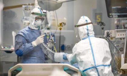 In assenza dei vaccini, con la variante Delta i ricoveri Covid potrebbero raddoppiare